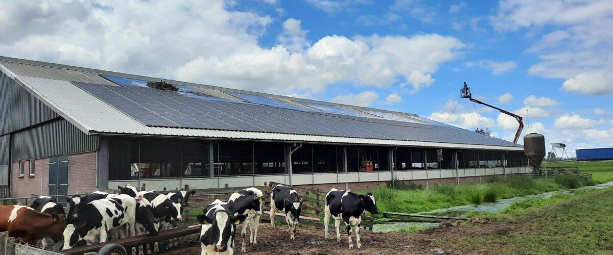 Onderhoud PV-panelen